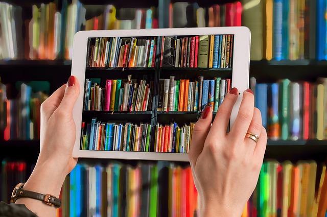 Bibliotheken im digitalen Zeitalter
